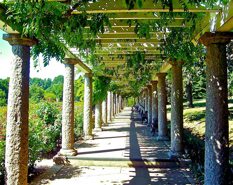 Covered pergola images