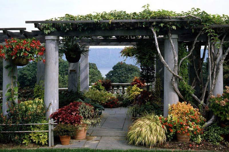 Essential Garden Pergola