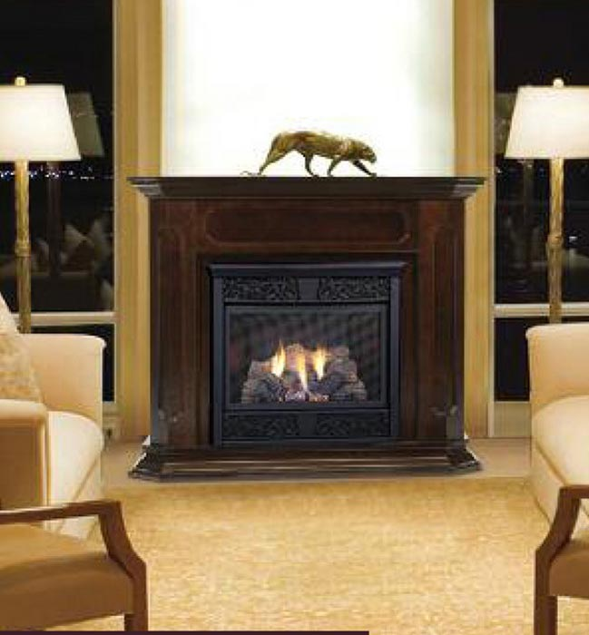 Ventless Propane Fireplace As Efficient And Clear Alternative To Ordinary Fireplace