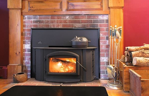Arched Fireplace Insert Wood Burning