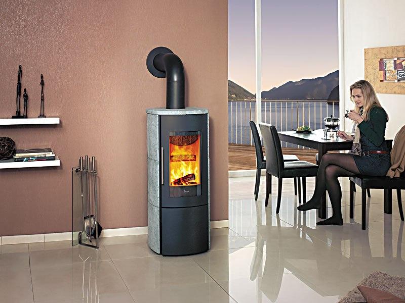 Ashley Fireplace Inserts Wood Burning