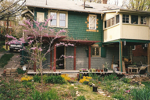 flowers house green home yard garden washingtondc spring backyard bloom redbud pergola bungalowusa