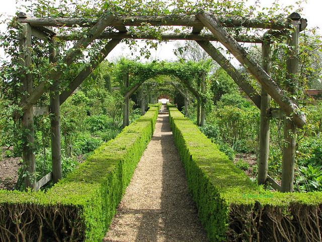 uk canon bench pond topiary arch shadows hampshire hedge nationaltrust pathway pergola southernengland mottisfontabbey s3is steveeverett nrromsey hggt gorgeousgreenthursday walledrosegarden