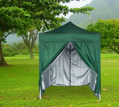 Quictent 6.6u0027 x 6.6u0027 Pop Up Canopy - Green & Garden treasures small gazebo canopy | Garden Landscape