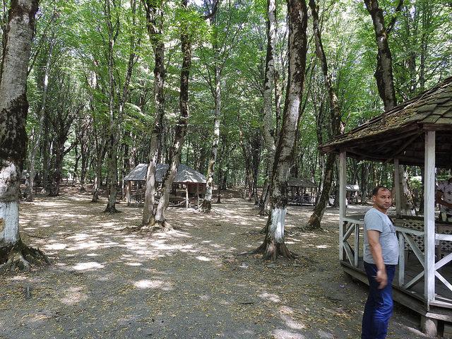 baku baki azerbaijan formerrussianterritory shamakhi samaxi shemakha landscaping garden pitstop reststop naturalsurrounds bush trees shady park water lake poolgazeboconical roofsitout