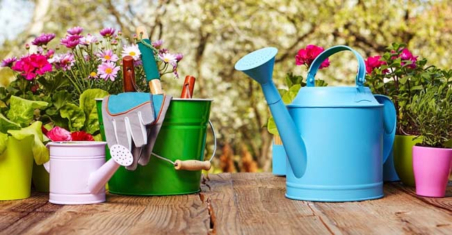 January Gardening Tips and To-do list by Planting Zone and Region