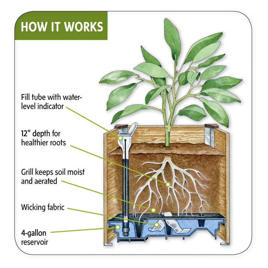 Self Watering Patio Planters
